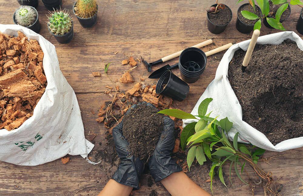 Job als Gärtnerin